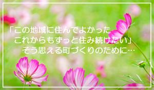 Sr_fl2_53l_8